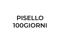 pisello-100giorni